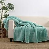 Berkshire Blanket Extra-Fluffy Throw Blanket   Ultra-Soft Plush Throw   Lightweight Warmth  Light Teal   55' x 70'