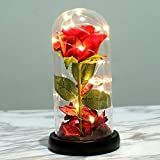 Rosa eterna en cúpula de cristal, rosa preservada en cúpula modelo la bella y la bestia, con luz led; regalo para el día de la madre, cumpleaños, bodas, aniversarios