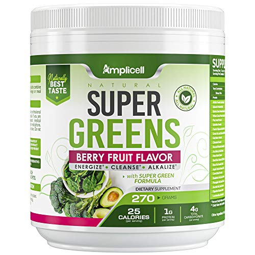 Super Greens - 270g Super Food Green Juice Organic Blend - Fruit and Vegetable Powder Supplement w/Probiotics - Non-GMO Organic Plant Food Green Drink Mix - Premium Superfood Veggie Juice Cleanse