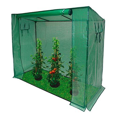 DEMA Tomaten Gewächshaus 200/80/170cm