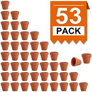 Best terracotta pots and planters Reviews