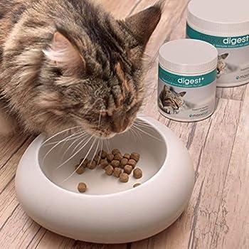 maxxicat - maxxidigest+ Probiotiques, prébiotiques et enzymes digestives pour Chats - Complément avancé pour Le système digestif et Le système immunitaire des Chats - Poudre sans OGM - Poudre 90 g