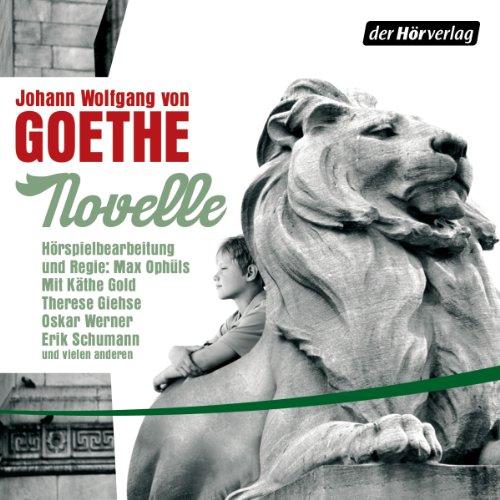 Novelle audiobook cover art
