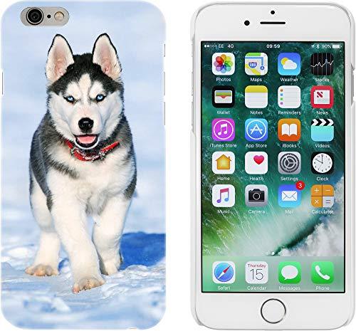 Azeeda Blanco 'Husky Siberiano' Funda para iPhone 6 y 6s (MC00001366)