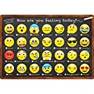 """Ashley Productions ASH91032 Smart Poly Chart, Emoji How are You Feeling, Polypropylene (PP), 13"""" x 19"""""""