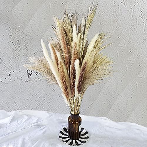 60 Pcs | 15 Pcs White Pampas & 15 Pcs Brown Pampas & 30 Pcs Reed Grass/Natural Dried Pampas Grass for Flower Arrangements Home Decor