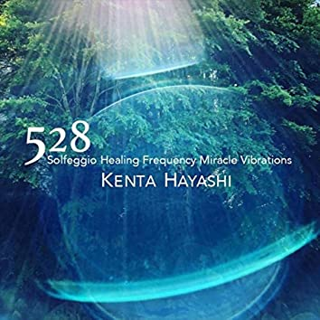 528 Solfeggio Healing Frequency Miracle Vibrations