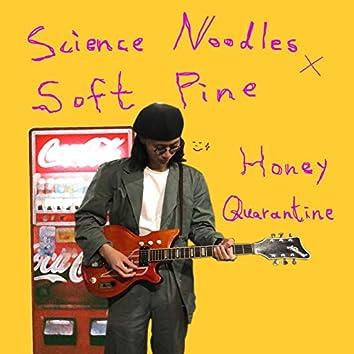 Honey Quarantine