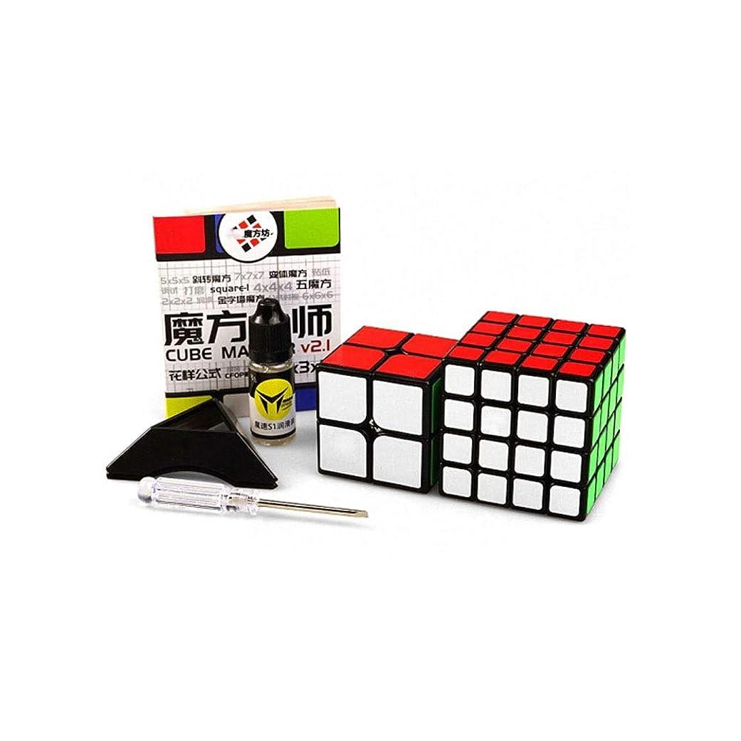 理解楽なタイピストGaoxingbianlidian ルービックキューブ、滑らかな質感のルービックキューブ、高品質のステッカーを贈り物として使用することができます(2次/ 4次) 良質 (Edition : Second order and Fourth order)