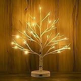 Dekoratives Lichterbaum | Leuchtbaum mit 24 Warmweißer LEDs Licht | 45cm Lichterzweige für...
