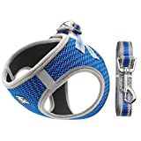 No Pull Dog Harness Small Dogs, Soft Mesh Reflective Breathable Step-In Dog Cat Harness and Lead Set for Puppy Cat Pet Vest with Leash Adjustable for Outdoor Walking, Training S Blue