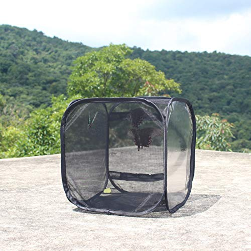 ButterflyCollapsible Butterfly Habitat Butterfly Cage Insect Net Terrarium Pop-up for Kids, Butterfly Habitat Collapsible Bug Catcher Net Mesh Insects Plant Cage Terrarium Pop-up for Kids, A