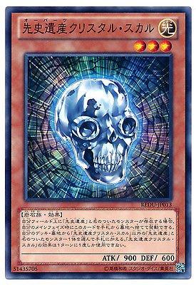 Yu-Gi-Oh! REDU-JP013 - Chronomaly Crystal Skull - Normal Japan