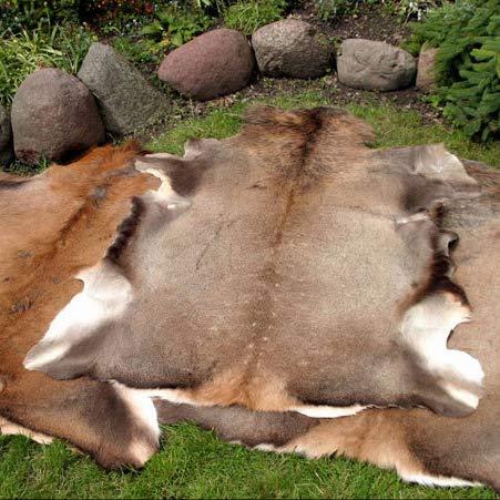 Gran ciervo rojo piel piel piel taxidermia ornamento alfombra alfombra piso decoración colgante de pared diseño gótico para el hogar