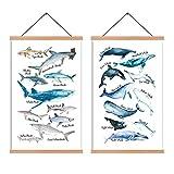 HPNIUB 2er Set Kinderzimmer Bild für Junge,Fische Bilder