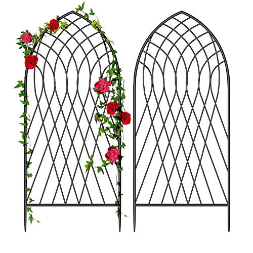 """Amagabeli 2 Pack Large Garden Trellis for Climbing Plants 75"""" x 31"""" Heavy Duty Rustproof Black Iron Plant Trellis for Potted Plants Support Tall Wall Metal Trellis for Rose Vegetables Cucumber GT05"""