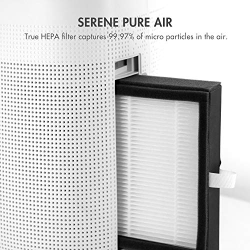 Tenergy Sorbi 1000ml Air Dehumidifier w/Air Purifying Function, True HEPA Filter, Auto Shutoff, Touch Control Adjustable Air Speed, Ultra-Quiet Allergies Eliminator, Ideal for Closets and Bathrooms