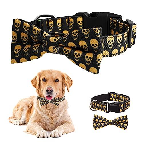 Divertido collar de perro con diseño de...