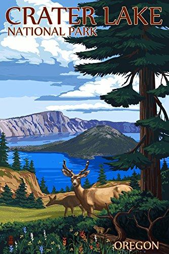 Crater Lake National Park, Oregon, Deer Family 47338 (9x12 Art Print, Wall Decor Travel Poster)