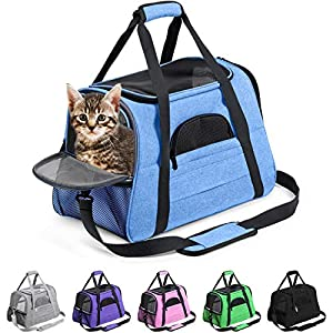 Prodigen Pet Carrier Airline Approved Pet Carrier Dog Carriers for Small Dogs, Cat Carriers for Medium Cat Small Cat, Small Pet Carrier Small Dog Carrier Airline Approved Cat Travel Carrier-Blue,L