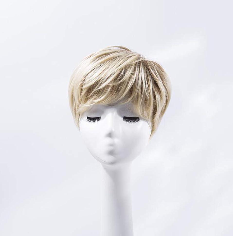 オーバーランバーベキュー見出しかつらヨーロッパとアメリカの偽の白いグラデーションショートヘアの耐熱合成コスプレ女性のパーティー