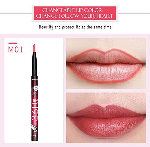 AKAAYUKO 1PCS Crayons à Lèvres Professionnels pour Lèvres Maquillage -#1