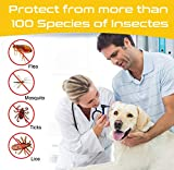 IMG-2 collare antipulci cane impermeabile collari