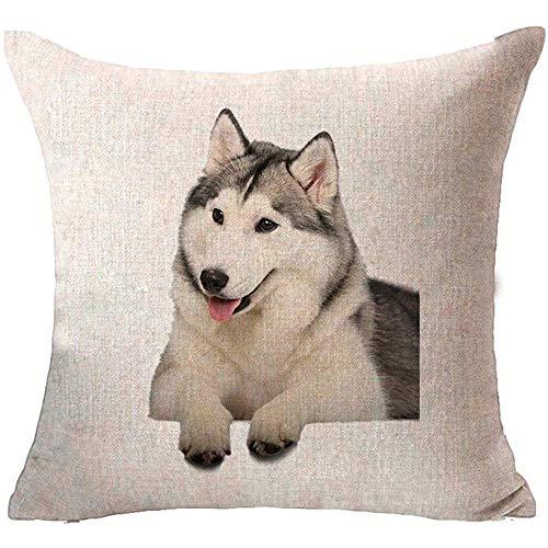 WEURIGEF Lovely Dog Impreso Throw Pillow Case Funda de cojín Sofá Home Office Decor