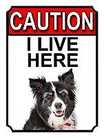 Caution I Live Here ティンサイン ポスター ン サイン プレート ブリキ看板 ホーム バーために
