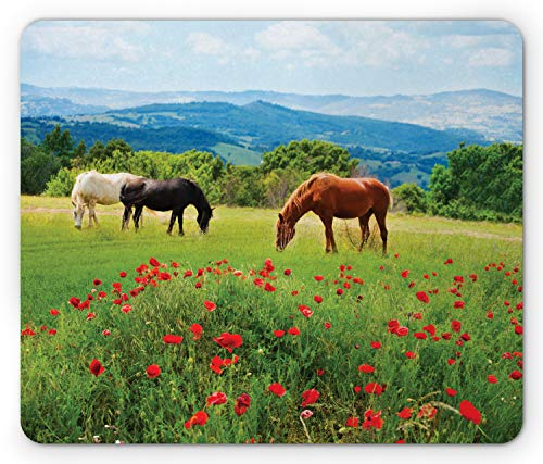 Ambesonne Horses Mouse Pad, Various Kinds of Horses Eating Grass in Field Mountain Landscape Rural Scene Print, Rectangle Non-Slip Rubber Mousepad, Standard Size, Green Red