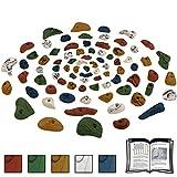 ALPIDEX 80 Klettergriffe in verschiedenen Größen und Formen - für eine Kletterfläche von ca. 6 bis 10 m², Farbe:bunt