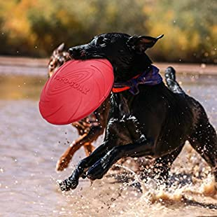 Silicone Dog Frisbee Toy Training Exercising Throwing Flying Disc Fetch Toy For Pet Dog BPA Free