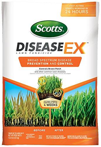 Scotts DiseaseEx Lawn Fungicide - Lawn Fungus Control &...