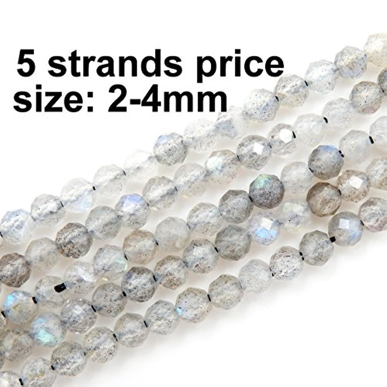 2-4mm Faceted Gemstone Beads for Jewelry Making, Sold per Bag 5 Strands Inside (Labradorite, 2mm) avtfpfpggwd32446