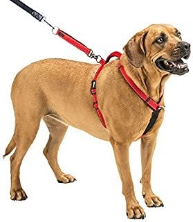 Best sporn ultimate dog harness Reviews
