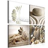 murando - Bilder Muscheln 60x60 cm Vlies Leinwandbild 4