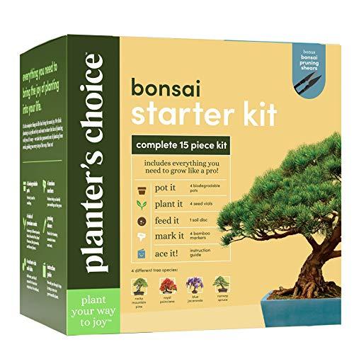 Best <strong>Bonsai Kit</strong>