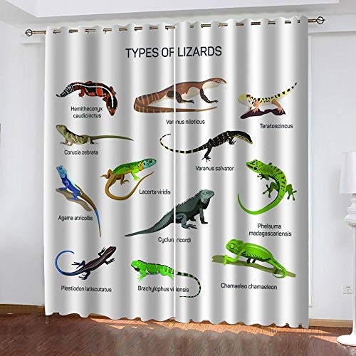 Ageeseso Color cartoon animal lizard Blackout Curtain Set-For Decoration Living Dining Bedroom Top Insulation Compartment Bedroom Living Room Children's Room 3D Printing- 51x62 inch Beauty Hairdres