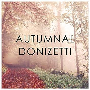 Autumnal Donizetti