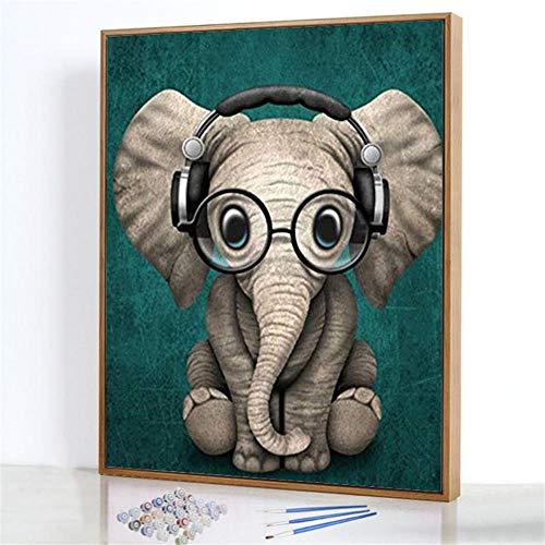 GJJHR DIY Pintura por Números Kits,Bebé Elefante con Gafas Pintada a Mano Pintura al óLeo Digital,Lienzo de Color, Dos Juegos de Pintura - 40x50cm(Marco de Madera)