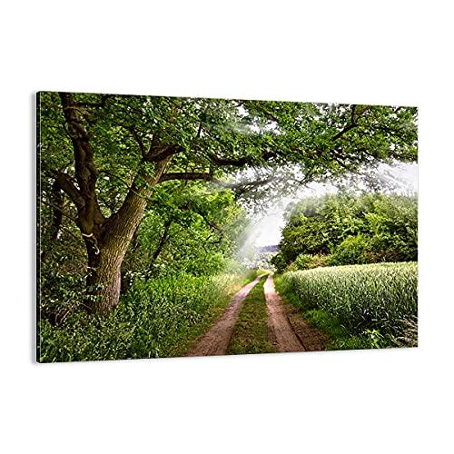 Cuadro sobre lienzo - Impresión de Imagen - Camino naturaleza bosque verde - 100x70cm - Imagen Impresión - Cuadros Decoracion - Impresión en lienzo - Cuadros Modernos - AA100x70-2637