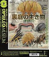 カプセルQミュージアム 裏庭の生き物 -土壌生物大全-【台紙】
