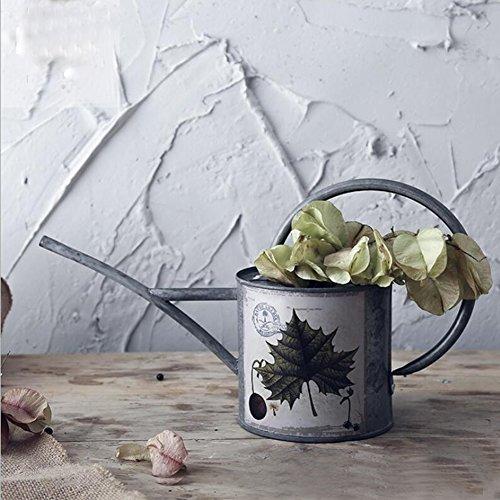 WANGXN Pot De Jardin De Fleur De Fer Peint À La Main De Pot D'arrosage Forgé Le Seau Décoratif De Fleur pour des Plantes D'intérieur,Gray