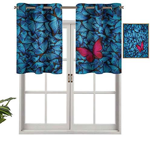 Hiiiman Cenefa de cortina para ventanas de privacidad interior, diseño de insectos grandes, Lepidoptera, juego de 1, 127 x 45 cm para puerta corredera de patio o comedor