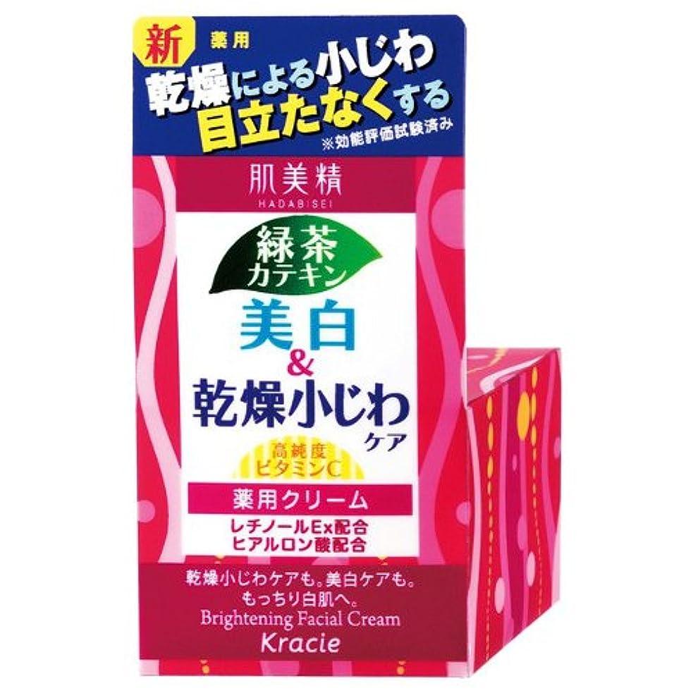 階段全体にぶら下がる肌美精 薬用美白&乾燥小じわケア クリーム 50g [医薬部外品]