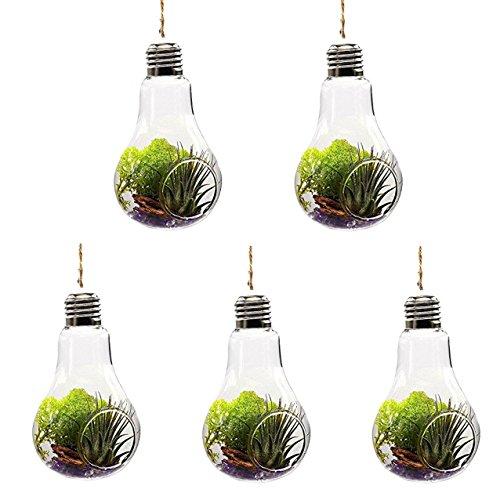 Vikenner 5pz pianta vaso di vetro trasparente lampadina a forma di fiore appeso terrario contenitore con 1corda per decorazione matrimonio casa giardino ufficio–14*8cm–1fori