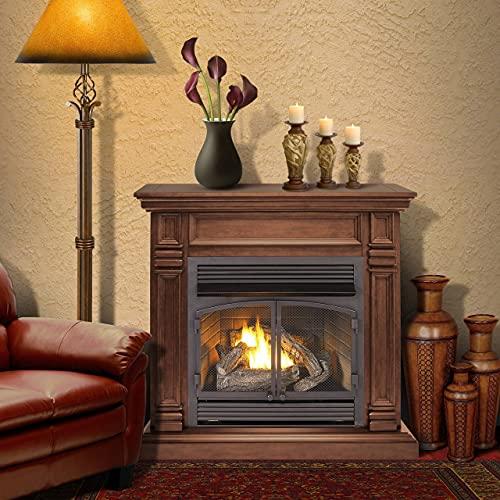 ProCom Dual Fuel Ventless Gas Fireplace System - 32,000 BTU, Remote Control, Chocolate Finish - Model A-FBNSD400RT-2-CH
