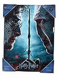 SD Toys Poster Harry Potter und Voldemort, mehrfarbig, 41 x