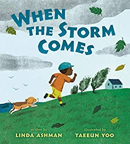 When the Storm Comes by [Linda Ashman, Taeeun Yoo]