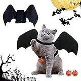 BoloShine Katze Bat Wings Kostüm, Halloween...